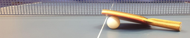 Българска федерация по тенис на маса